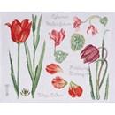 DMC No 2 (14561b) fleur & botanique - tulipe et  cyclamen (op=op)