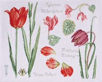 DMC No 2 14561b fleur & botanique - tulipe et cyclamen op=op