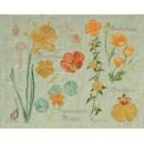 DMC No 2 (14561d) fleur & botanique - narcisse et capucine(op=op)