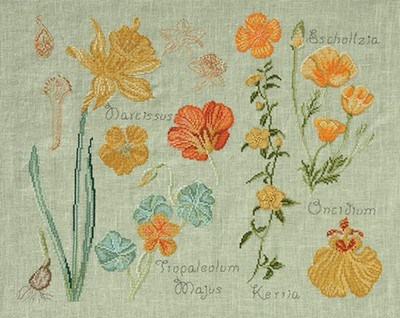 DMC No 2 14561d fleur & botanique - narcisse et capucine op=op