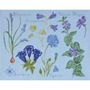 DMC No 2 (14561g) fleur & botanique - gentiane et campanule