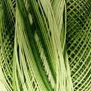 DMC special dentelles no. 80 - 0092 groen - licht groen
