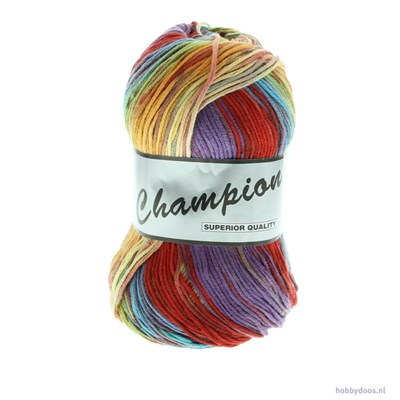 Lammy Yarns champion 901 regenboog