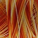 DMC special dentelles no. 80 - 0051 oranje - geel