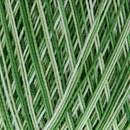 Lammy Yarns Coton crochet 427 groen gemeleerd