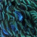 Scheepjes Butterfly 0003 blauw mix