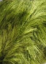 Lang Yarns Soft hair 847.0044 lime groen
