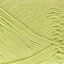 Scheepjes Cotton 8 642 pistache groen
