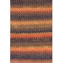 Lang Yarns Mille Colori 697.0039