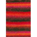 Lang Yarns Mille Colori 697.0160