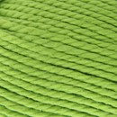 Coton 5 071 linde groen - Lammy Yarns