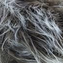 Fourure 05 bruin - Lammy Yarns (op=op)