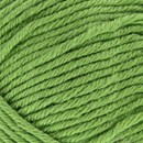Victory 046 linde groen - Lammy Yarns
