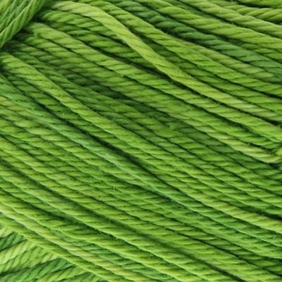 Lammy Yarns Rio multi 627 groen
