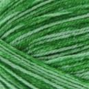 Scheepjes Velvet 854 Turner - groen