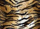 Velboa 31 tijgerprint (25 cm)