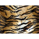 Velboa 31 tijgerprint (50 cm)