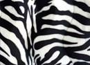 Velboa 13 zebraprint (25 cm)