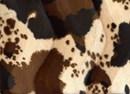 Velboa 24 koeprint bruin (25 cm)