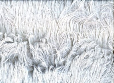 Bont 08 zilver grijs per 25 cm