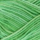 Scheepjes Catona denim 171 (50 gram) - lente groen