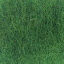 Bhedawol groen 0470 (25 gram)