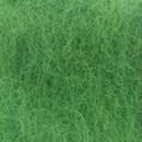 Bhedawol groen lente 0471 (25 gram)