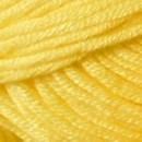 Cheval blanc - ambre 032 poussin