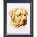 Borduurpakket hond - Labrador