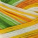 Lammy Yarns Multicolor No. 1 702 groen geel wit