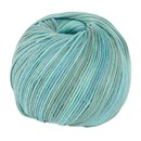 DMC Natura Just Cotton 302S-N487 aqua gemeleeerd