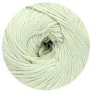DMC Natura Just Cotton 302S-N79 licht mint groen