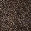 Pluche egeltjes bruin licht bruin (24 cm)
