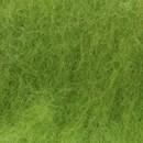 Bhedawol groen fel (100 gram)