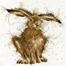 Borduurpakket dieren - Hare Brained