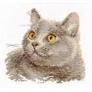 Borduurpakket dieren - British cat