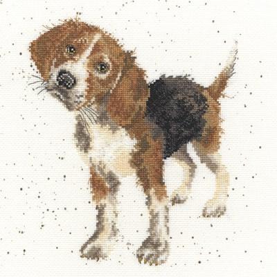 Borduurpakket hond - Beagle