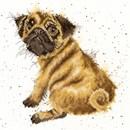 Borduurpakket hond - pug