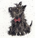 Borduurpakket hond - scottie