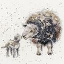 Borduurpakket dieren - Ewe and me