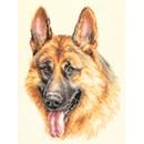 Borduurpakket hond - German Shepherd
