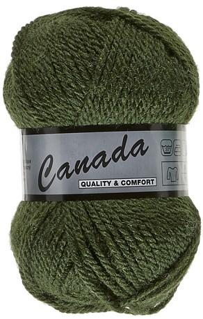 Lammy Yarns Canada 079 mos groen