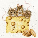 Borduurpakket dieren - crackers about cheese