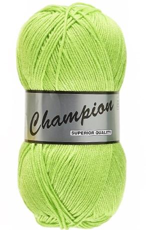 Lammy Yarns champion 071 lente groen