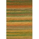 Lang Yarns Mille Colori Baby 845.0059