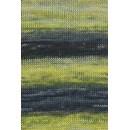 Lang Yarns Dipinto 975.0014 geel groen