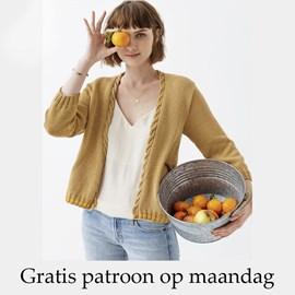 Gratis patroon - Breipatroon vest