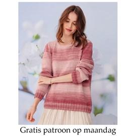 Gratis patroon - Breipatroon trui