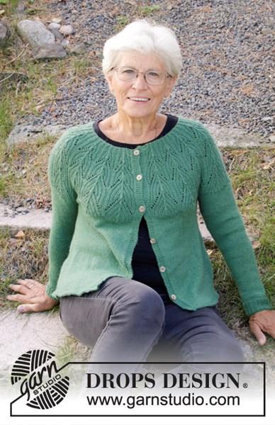 Breipatroon Dames vest