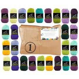 Cal 2014 pakket 1